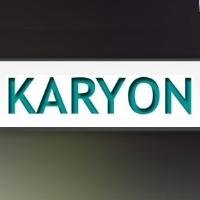 Karyon Computers en Netwerken